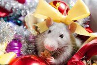 «Год Белой Металлической Крысы»: что нельзя ставить на праздничный стол