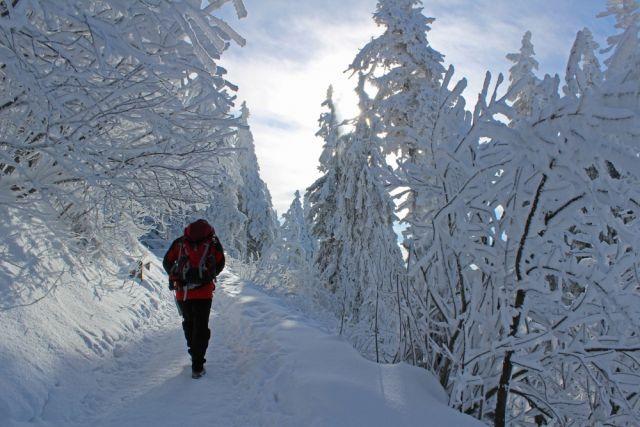 По оперативным данным, у волонтёров сломались снегоходы и они не могут продолжать движение.