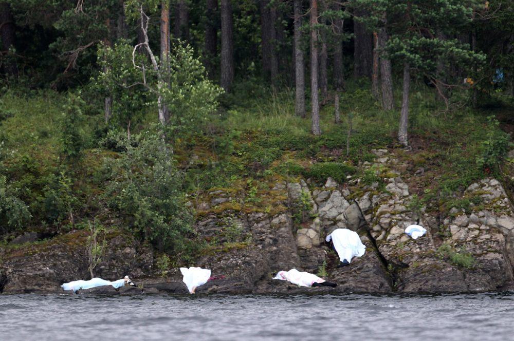 22 июля 2011 года Андерс Брейвик взорвал бомбу у одного из зданий правительства в Осло. После этого террорист открыл стрельбу на острове Утёйа, где проходил слет молодежного крыла норвежской социал-демократической Рабочей партии. Жертвами Брейвика стали 77 человек, большинство из которых подростки.