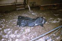 В Киеве девушка выпала с 13-го этажа жилого дома: детали жуткого инцидента
