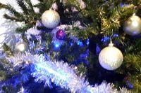 Муниципалитеты Тюменской области активно празднуют Новый год