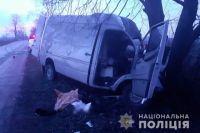 На Киевщине в ДТП с микроавтобусом погиб спасатель ГСЧС: подробности