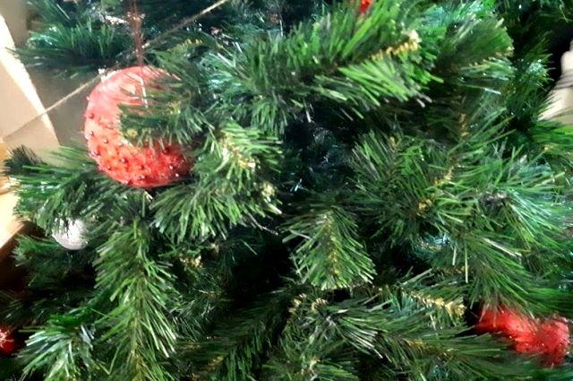 Тюменцам рассказали, где оставлять новогодние елки