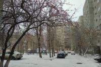 В Тюмени на Рождество обещают теплую погоду