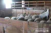 В Киевской области владелец мини-зоопарка морил зверей голодом