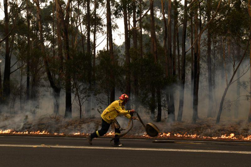 Пожарный в районе города Улладалла в штате Новый Южный Уэльс.