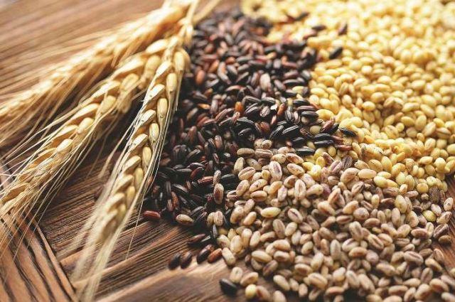 Стало відомо, скільки Україна експортувала тонн зерна