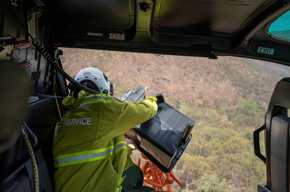 Сотрудники охраны национальных парков и дикой природы штата Новый Южный Уэльс сбрасывают для пострадавших от пожаров валлаби свежую морковь.