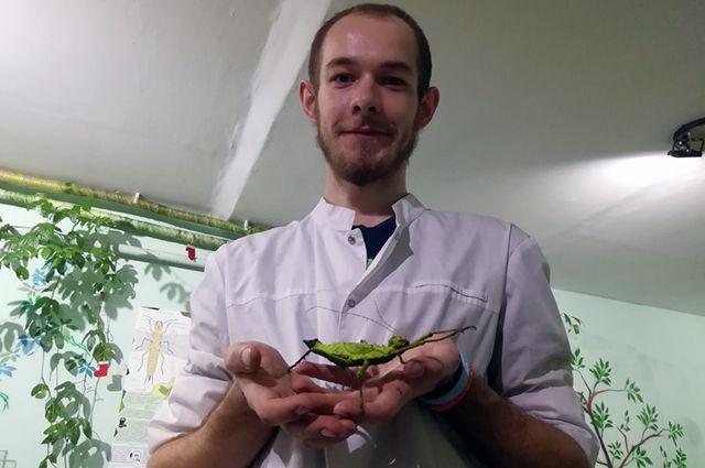 В коллекции Сергея Быковского есть крупные экзотические виды насекомых.
