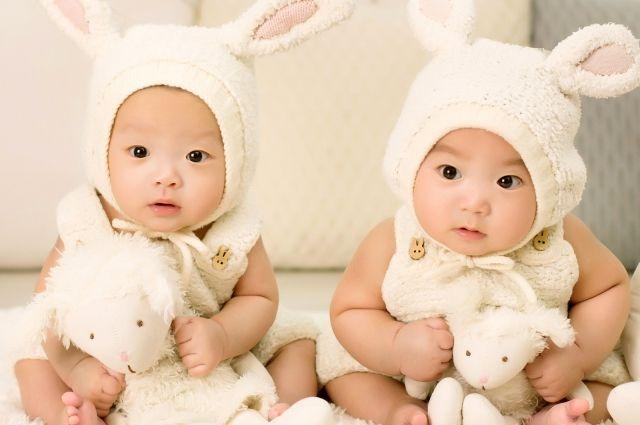 В Тюменской области в 2019 году родились более 500 двойняшек