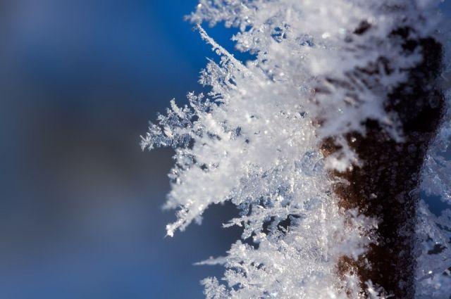 Погода на 20 января: в Украине немного похолодает