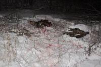 В Оренбургской области задержаны подозреваемые в незаконной охоте.