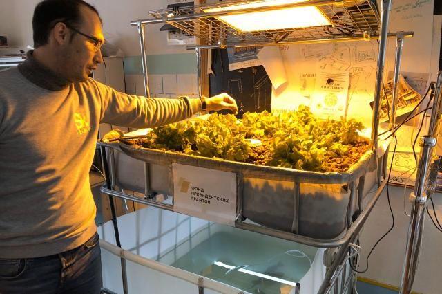 Конструктор, созданный молодым учёным-аграрием, позволяет выращивать растения и рыбу в городских условиях.
