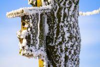 Сегодня мороз! Одевайтесь теплее.