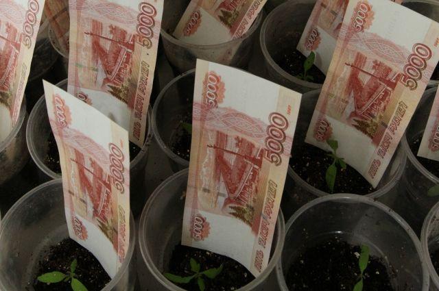 Если деньгами распоряжаться правильно, бюджет будет расти.
