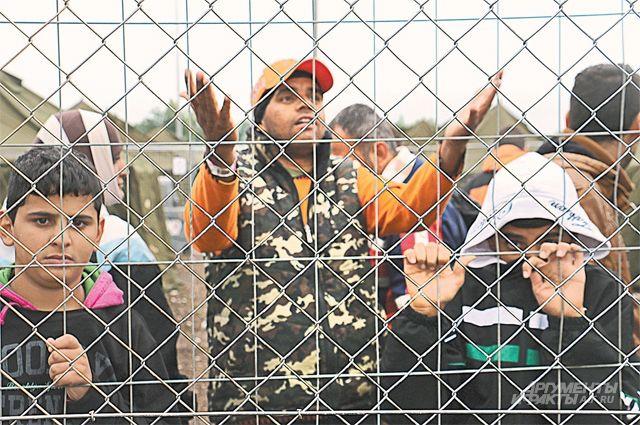 Из полутора миллионов иммигрантов за 3 года статус беженца получили лишь 2269человек.