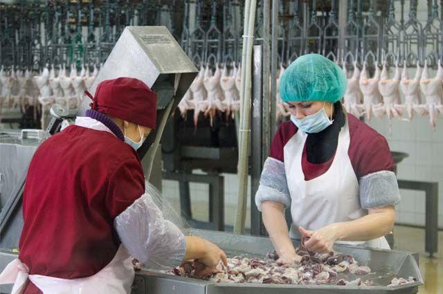 100 % акций птицефабрики сейчас принадлежат иностранной компании.
