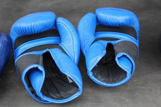 Специалисты не советуют вовлекать в бойцовский спорт малышей.
