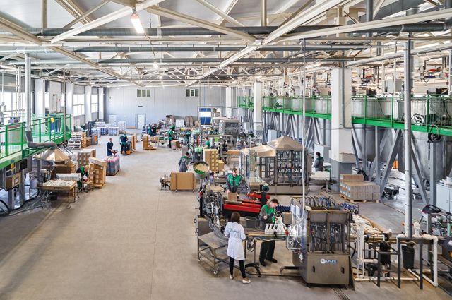 На всех импортозамещающих предприятиях модернизируют оборудование.