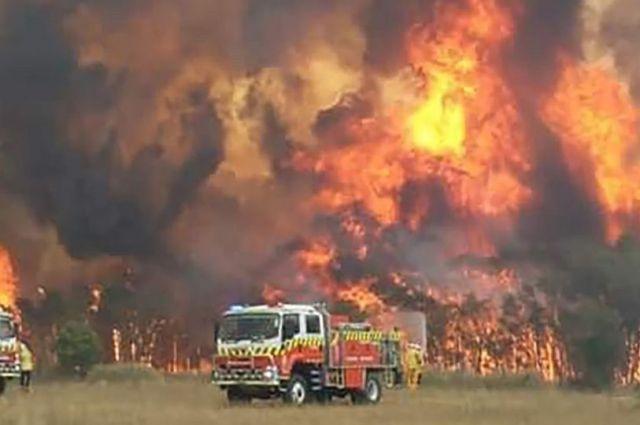 Ничего особенного? Действительно ли пожары в Австралии – катастрофа