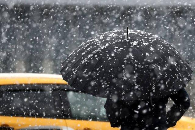 Погода на 23 января: в Украине местами возможны осадки
