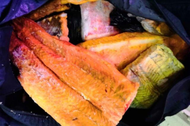 Во время обыска у него на квартире полицейские изъяли около 25 кг мороженой рыбы осетровых пород.