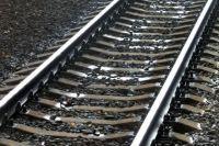 В Запорожье живодер бросил пса с моста под поезд