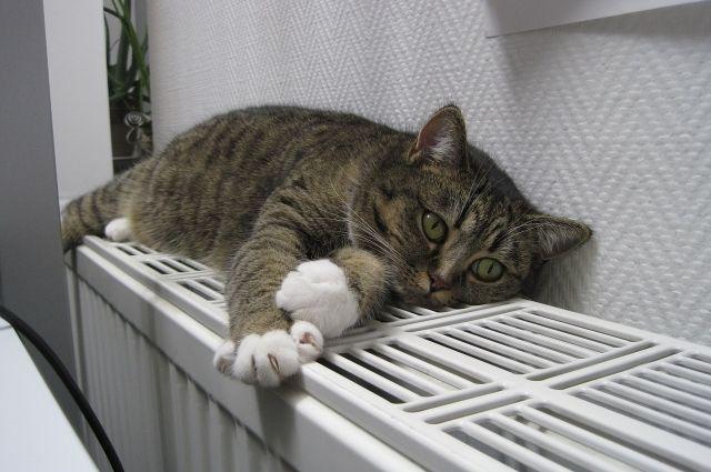 Порывы теплосети оставили без тепла 18 домов в Ижевске