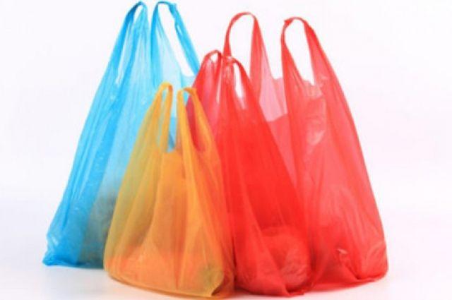 Пластиковые пакеты в обороте: в Минэнерго призвали ускорить запрет пластика