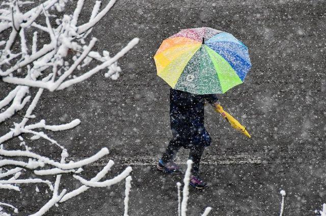 Погода на 29 января: в Украине объявили штормовое предупреждение