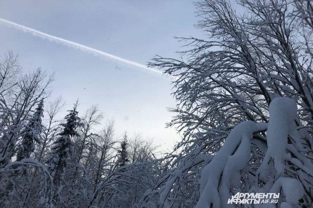 Днем ожидается местами небольшой снег.