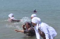 В Грозненском море женщины купаются в тихой, скрытой от посторонних глаз заводи.