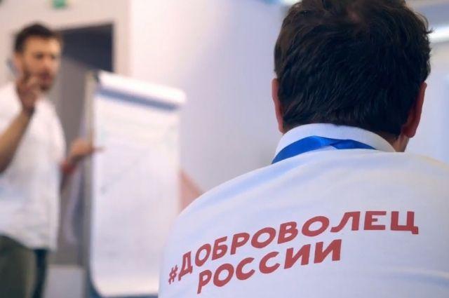 Два центра поддержки добровольчества откроют в Новосибирске в 2020 году.