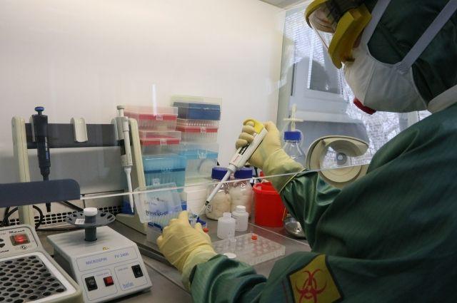 По информации коллег из Министерства здравоохранения РФ, первая вакцина против вируса будет разработана приблизительно через три месяца.