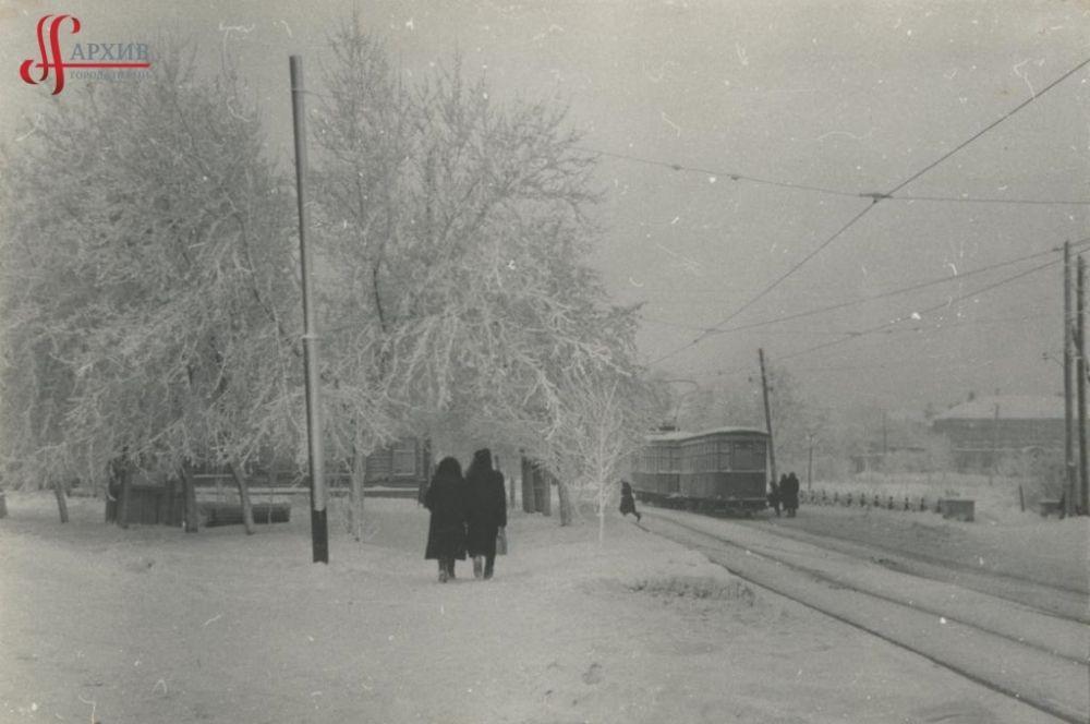 Разгуляйский сквер, деревья в инее, 22 января 1961 г.