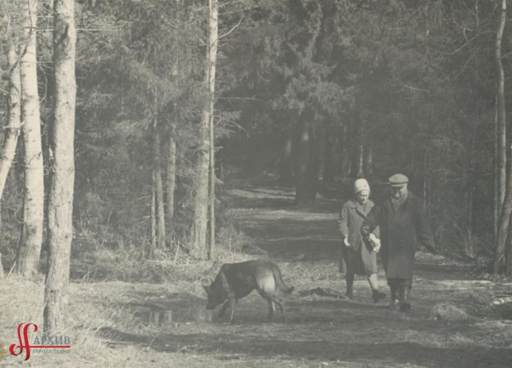 Прогулка в тенистых аллеях Балатовского парка, 9 апреля 1967 г.