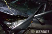 В Винницкой области подросток устроил смертельное ДТП
