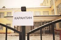 Вспышка гриппа в Украине: в Хмельницком школы закрылись на карантин