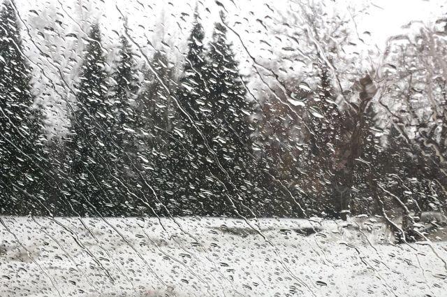 Погода на 3 февраля: в Украине местами возможны дожди