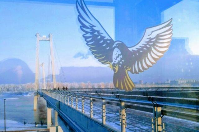 Наклейки птиц помогают избежать столкновения со стеклом.