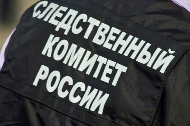 Сотрудники СК Новосибирской области проводят проверку по факту смерти двухлетней девочки в реанимации новосибирской больницы №1.