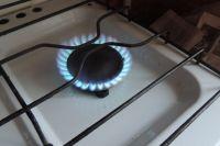Причиной отравления могли стать открытые краны газовой плиты.