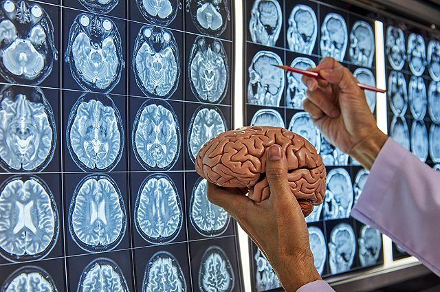 Держим в уме. 12 простых способов остановить деградацию мозга