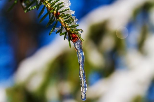 В ближайшие дни в Пермском крае ожидается понижение температуры.