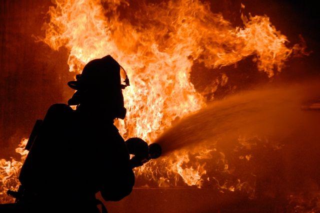 В Николаевской области произошел пожар, погибли двое людей