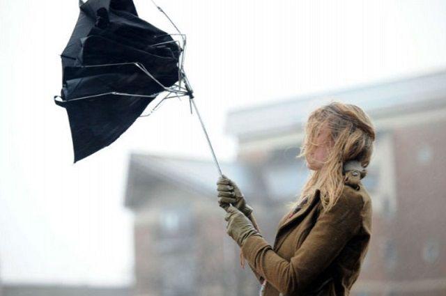 Дожди, мокрый снег и метель: синоптики предупредили об осложнении погоды