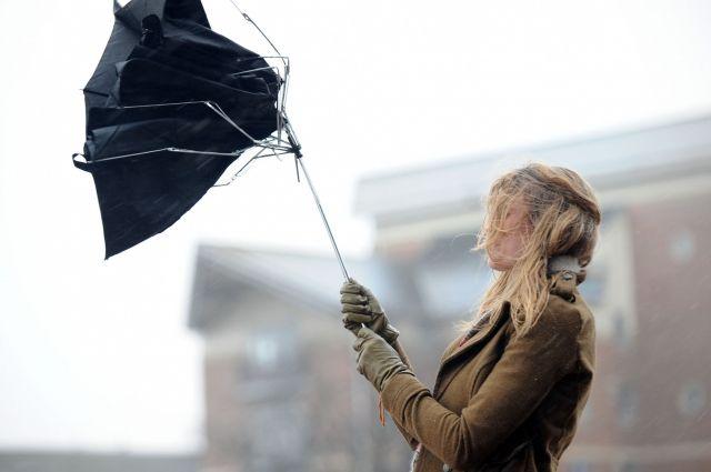 В Киеве ожидаются порывы ветра,- Укргидрометцентр