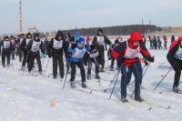 Зимние виды спорта очень популярны  среди горожан.