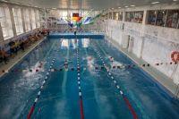 Тренажёрный зал и бассейн пользуются самой большой популярностью у тех, кто занимается в физкультурно-оздоровительном комплексе.