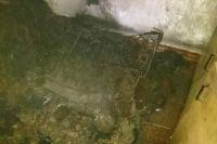 В Житомирской области произошел пожар в жилом доме: есть жертва